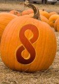 pumpkin_in_patch